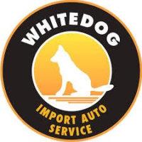 logo-whitedogauto
